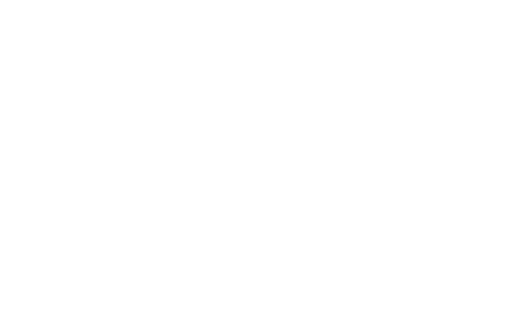 OFFICIAL SELECTION - Elements International Environmental Film Festival - 2019